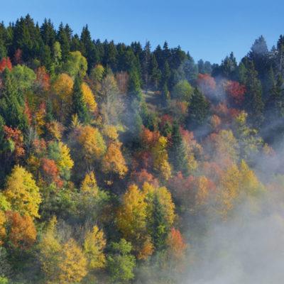 Chamrousse (Auvergne-Rhône-Alpes, France)