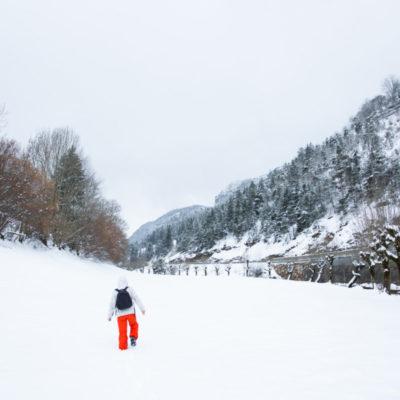Engins (Auvergne-Rhône-Alpes, France)